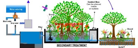 دانلود پایان نامه بیماری پنیسیلیومی مرکبات و اثر قارچکش های محلول سالیسیلیک اسید، بنومیل و تیابندازول در کنترل آن